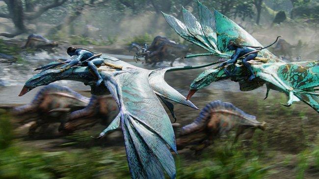 Avatar Edición Extendida Coleccionista