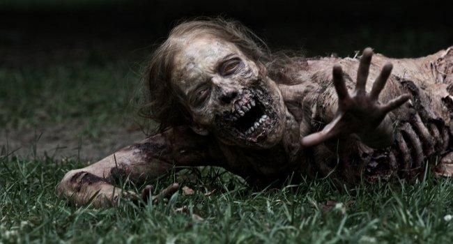 The Walking Dead Frank Darabont